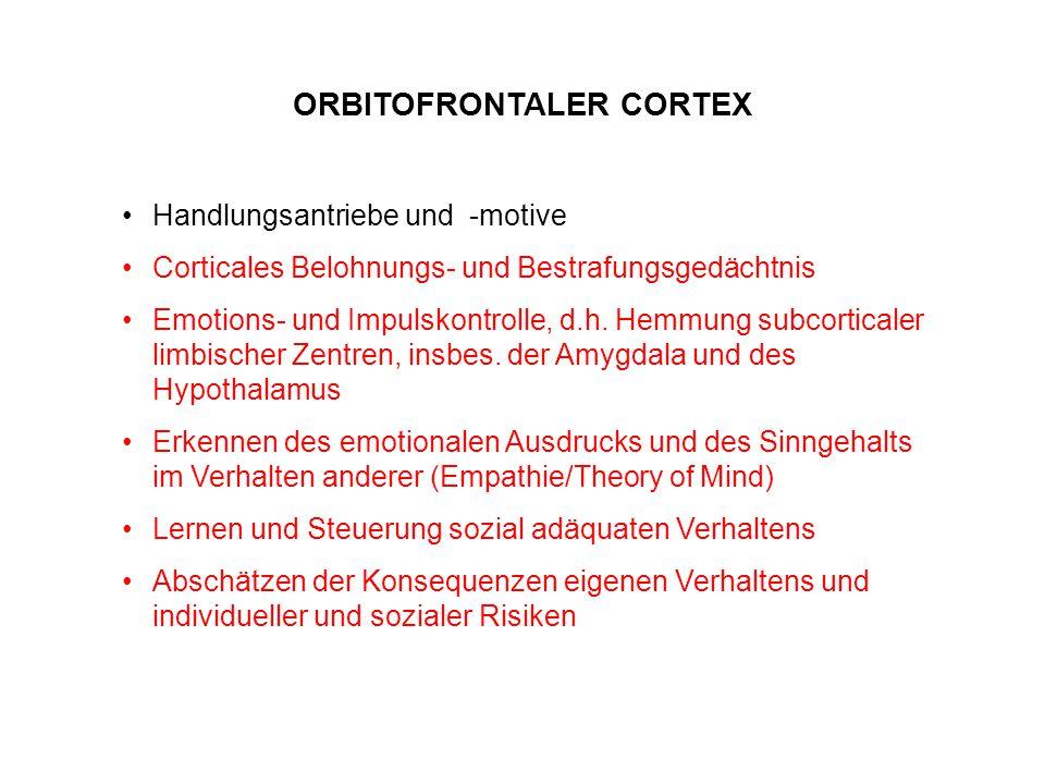 ORBITOFRONTALER CORTEX