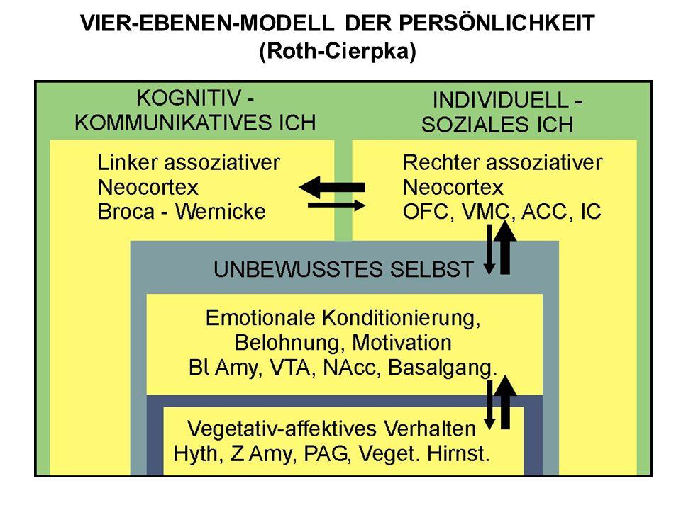 VIER-EBENEN-MODELL DER PERSÖNLICHKEIT (Roth-Cierpka)