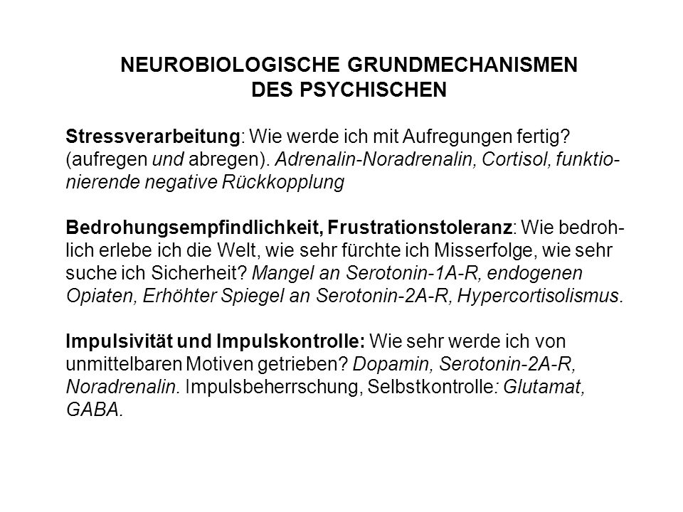 NEUROBIOLOGISCHE GRUNDMECHANISMEN