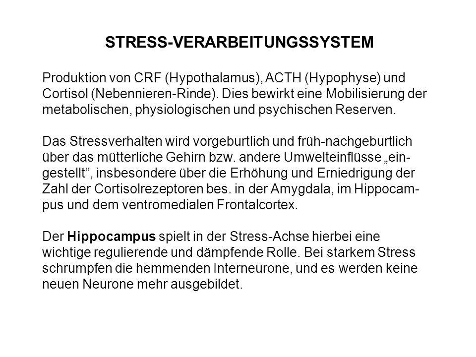 STRESS-VERARBEITUNGSSYSTEM