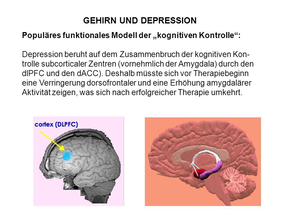GEHIRN UND DEPRESSION