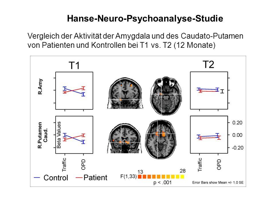 Hanse-Neuro-Psychoanalyse-Studie