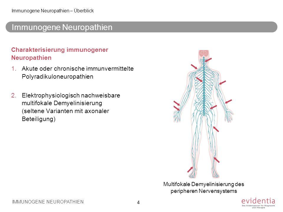 Immunogene Neuropathien