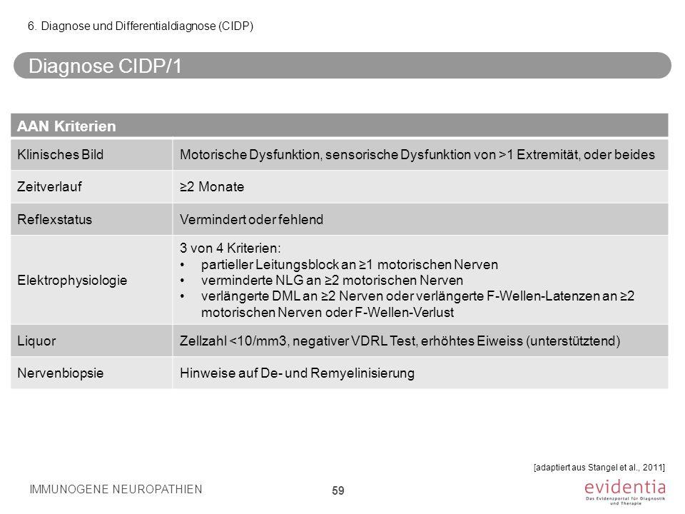 Diagnose CIDP/1 AAN Kriterien Klinisches Bild