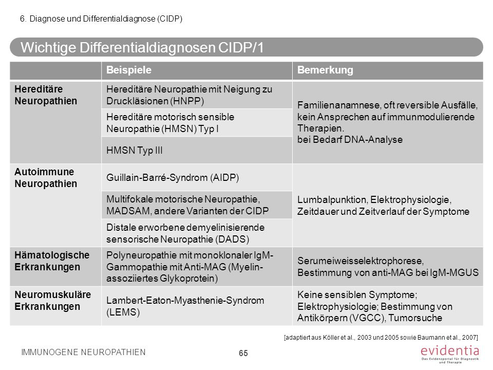 Wichtige Differentialdiagnosen CIDP/1