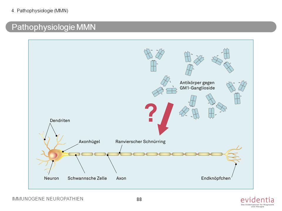 Pathophysiologie MMN 4. Pathophysiologie (MMN) IMMUNOGENE NEUROPATHIEN