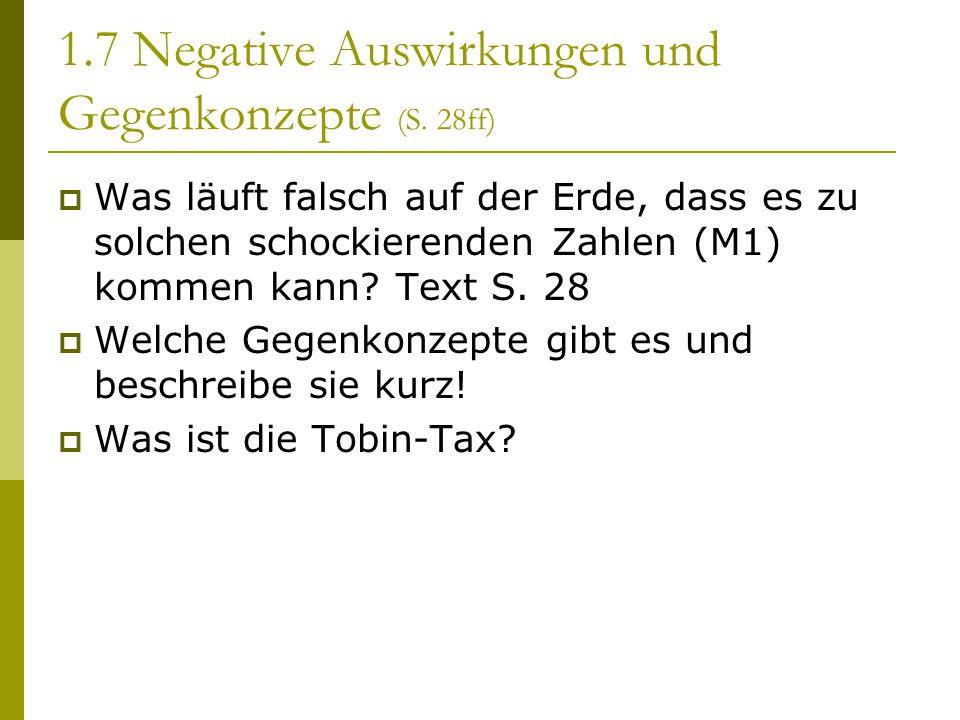 1.7 Negative Auswirkungen und Gegenkonzepte (S. 28ff)