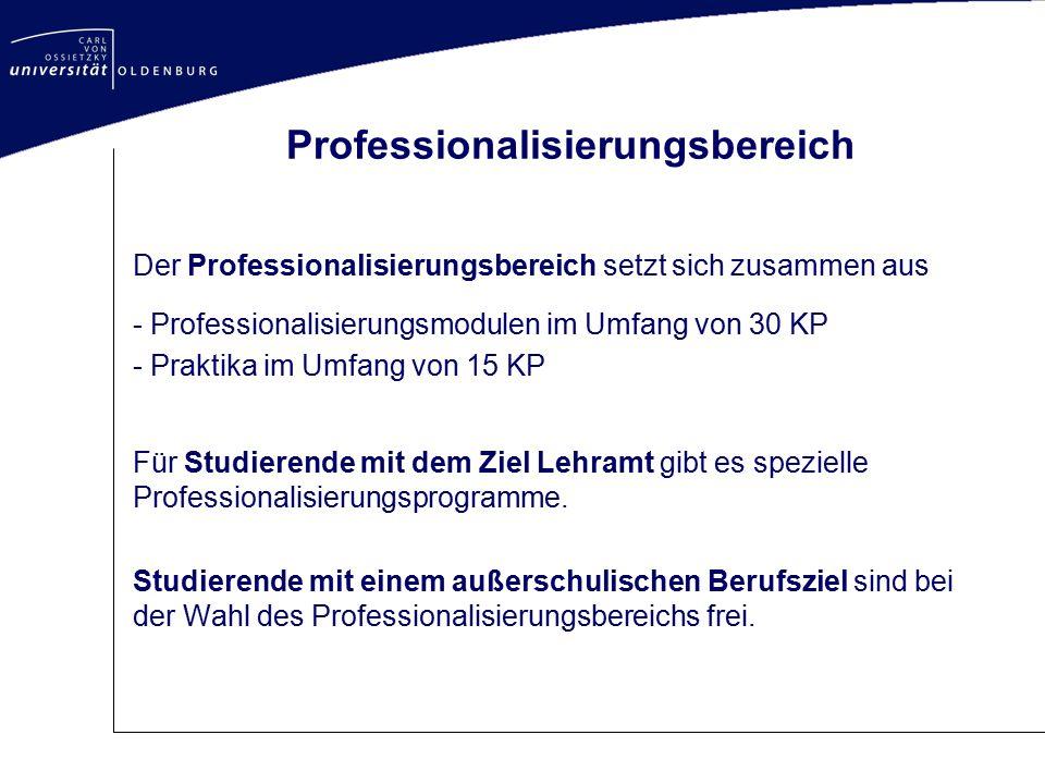 Professionalisierungsbereich