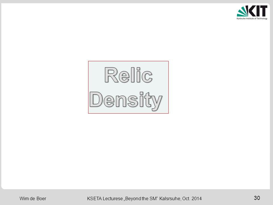 Relic Density
