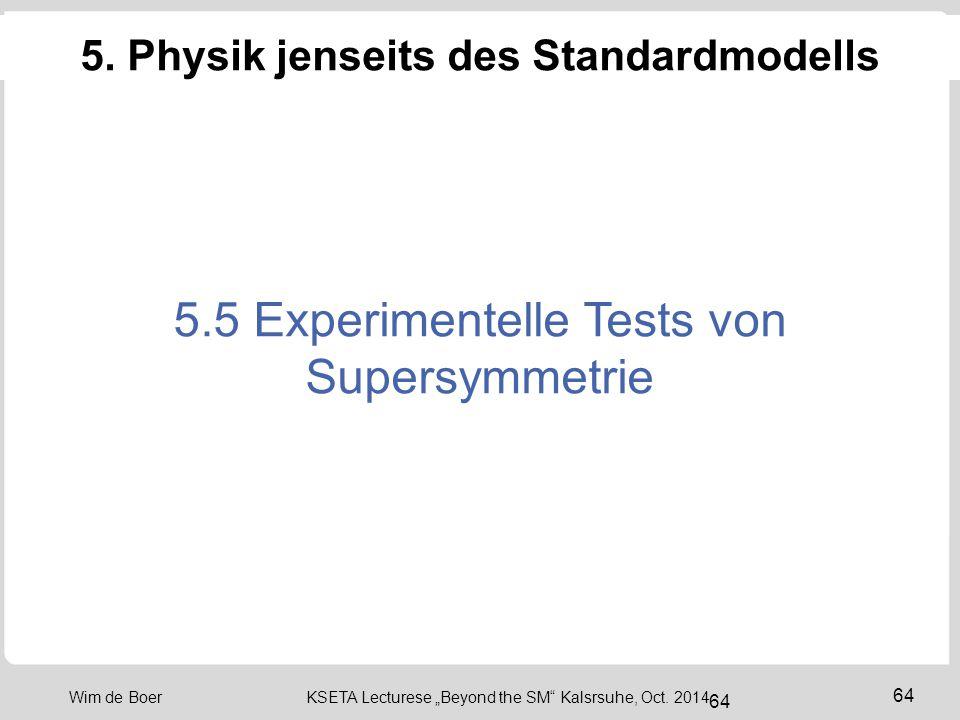 5. Physik jenseits des Standardmodells