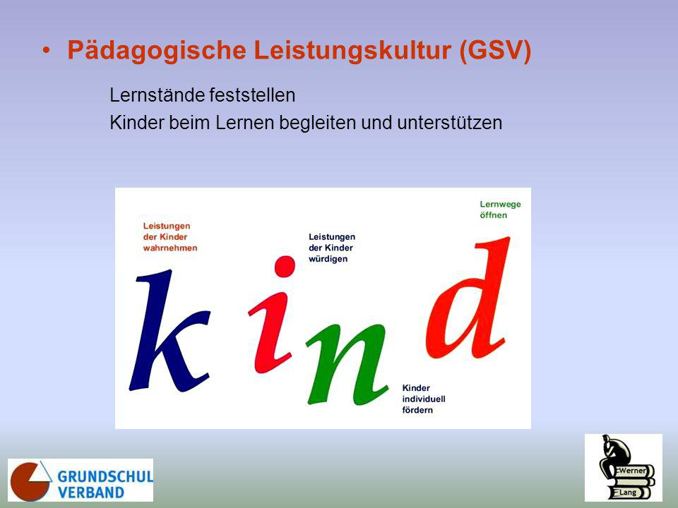 Pädagogische Leistungskultur (GSV)
