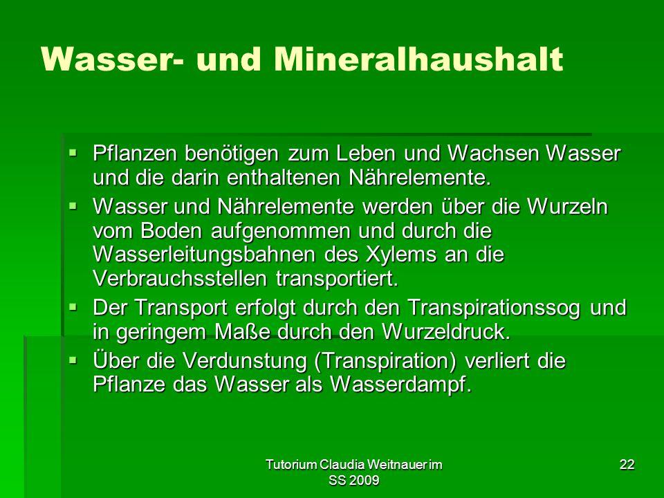 Wasser- und Mineralhaushalt