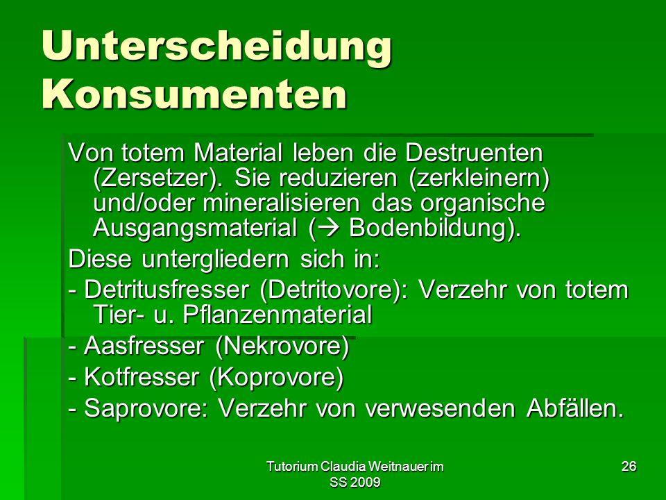 Unterscheidung Konsumenten
