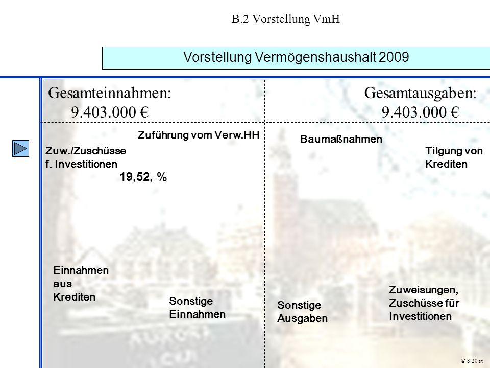 Vorstellung Vermögenshaushalt 2009
