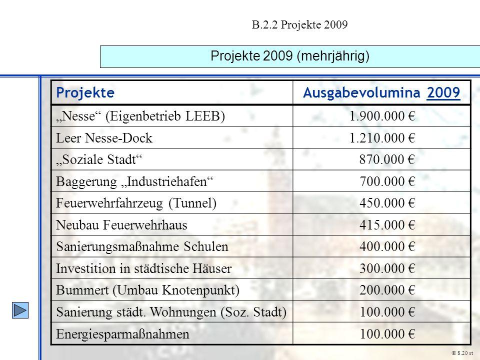 Projekte 2009 (mehrjährig)