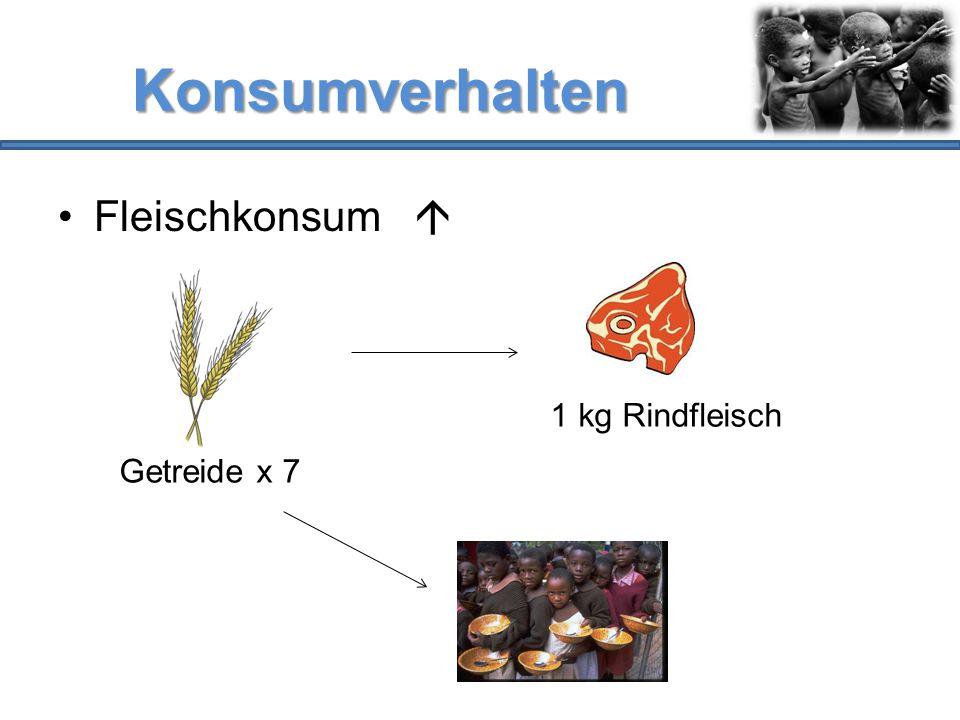 Konsumverhalten Fleischkonsum  1 kg Rindfleisch Getreide x 7