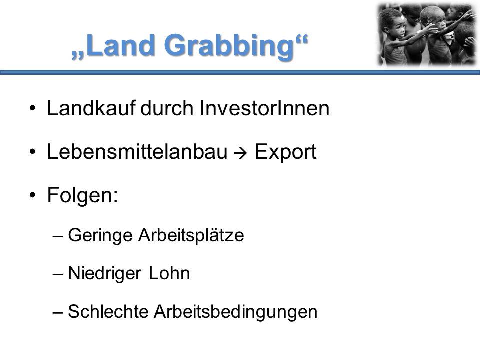 """""""Land Grabbing Landkauf durch InvestorInnen"""