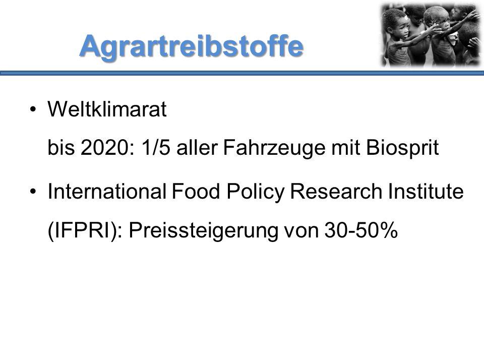 Agrartreibstoffe Weltklimarat bis 2020: 1/5 aller Fahrzeuge mit Biosprit.