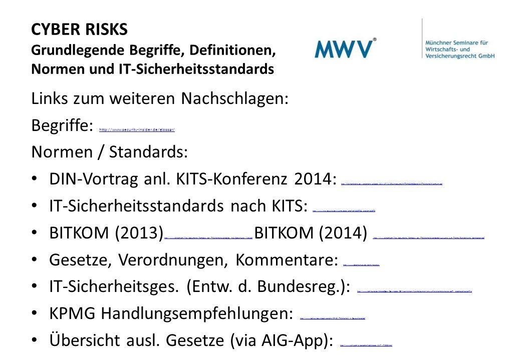 CYBER RISKS Grundlegende Begriffe, Definitionen, Normen und IT-Sicherheitsstandards