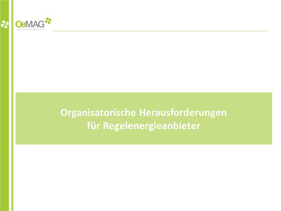 Organisatorische Herausforderungen für Regelenergieanbieter