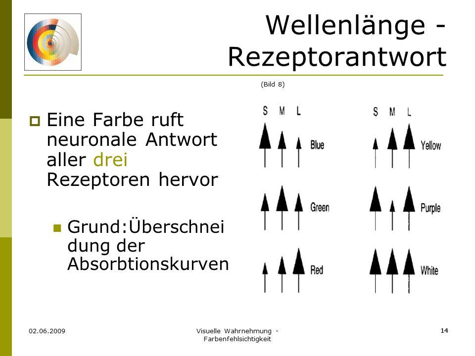 Wellenlänge - Rezeptorantwort