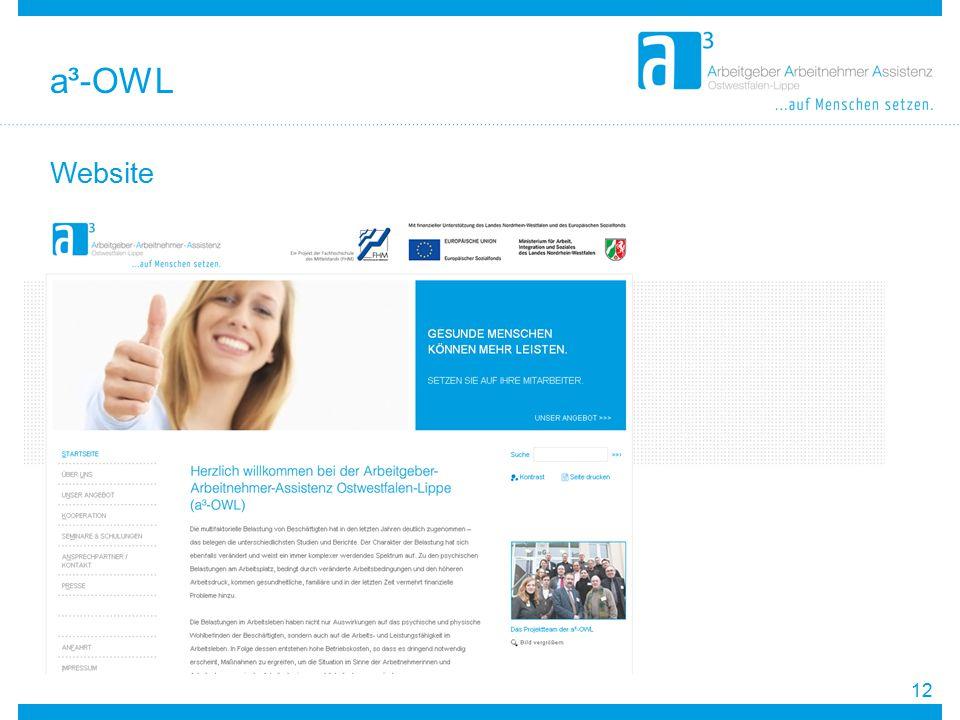 a³-OWL Website 12 12