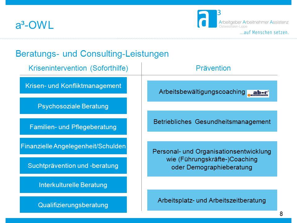 Beratungs- und Consulting-Leistungen