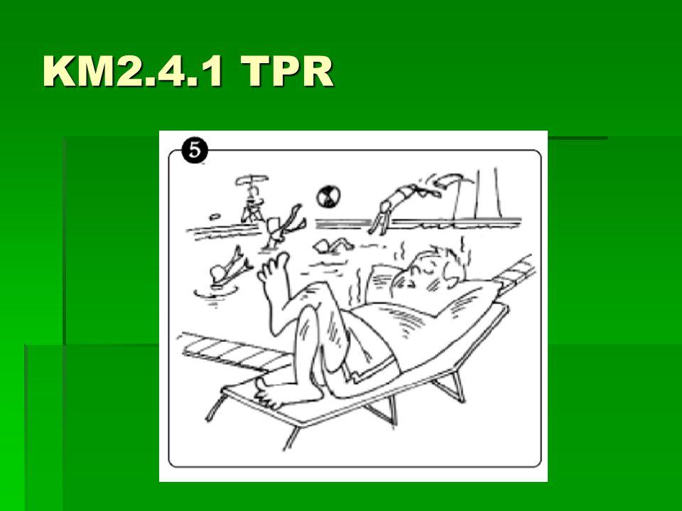 KM2.4.1 TPR