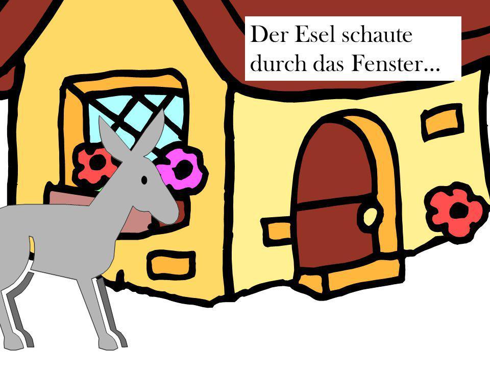 Der Esel schaute durch das Fenster…
