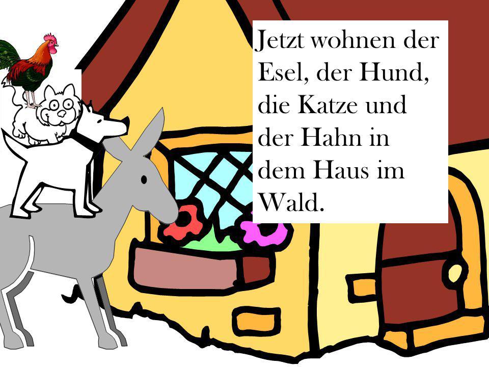 Jetzt wohnen der Esel, der Hund, die Katze und der Hahn in dem Haus im Wald.