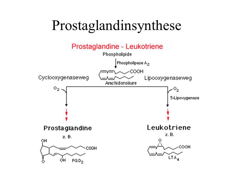 Prostaglandinsynthese
