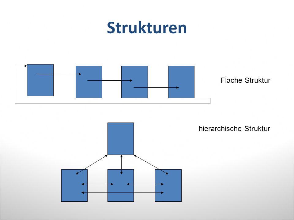 Strukturen Flache Struktur hierarchische Struktur