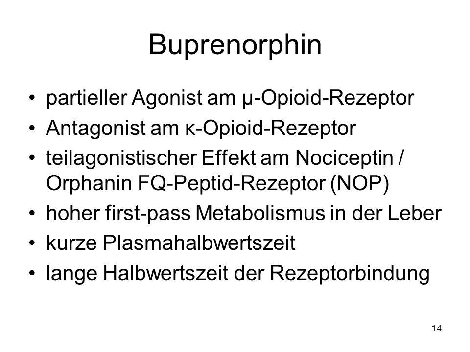 Buprenorphin partieller Agonist am μ-Opioid-Rezeptor