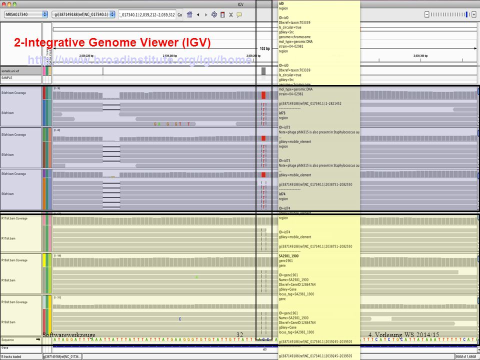 2-Integrative Genome Viewer (IGV) http://www. broadinstitute