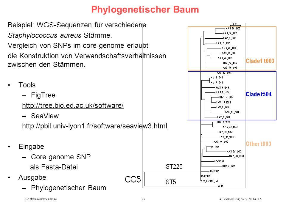 Phylogenetischer Baum