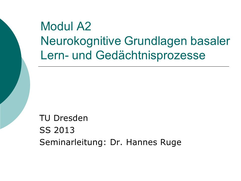 TU Dresden SS 2013 Seminarleitung: Dr. Hannes Ruge