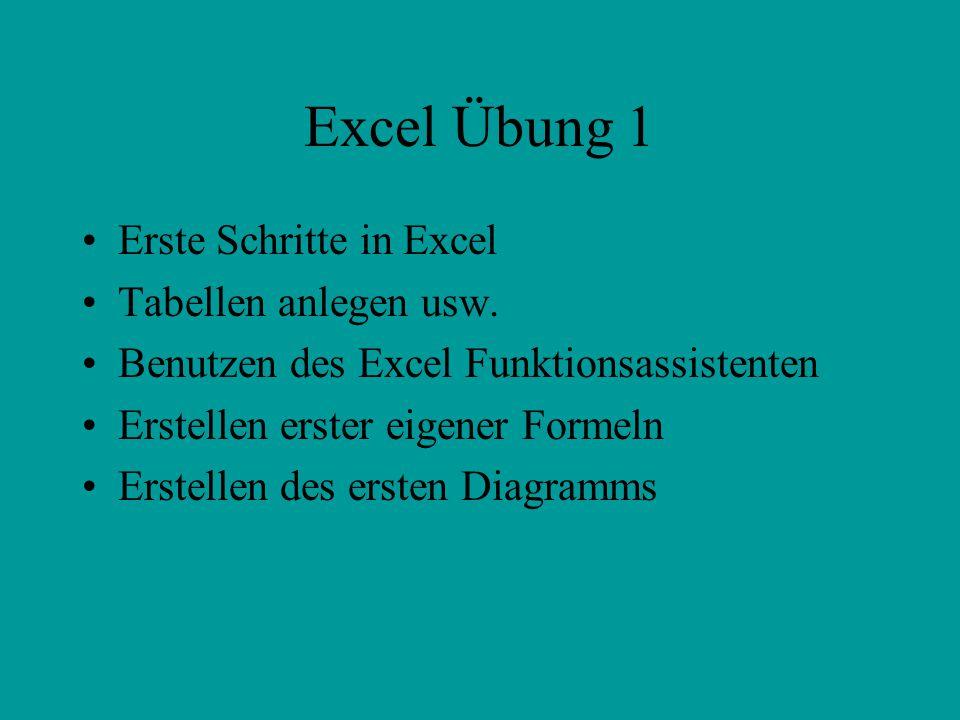 Excel Übung 1 Erste Schritte in Excel Tabellen anlegen usw.