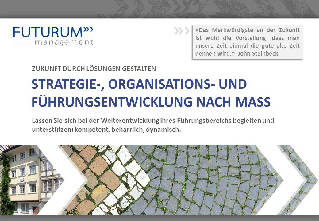 STRATEGIE-, ORGANISATIONS- UND FÜHRUNGSENTWICKLUNG NACH MASS