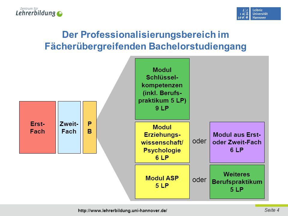 Der Professionalisierungsbereich im Fächerübergreifenden Bachelorstudiengang
