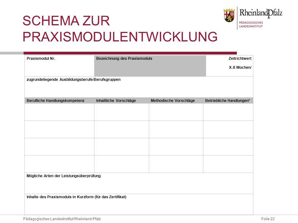 Schema Zur Praxismodulentwicklung
