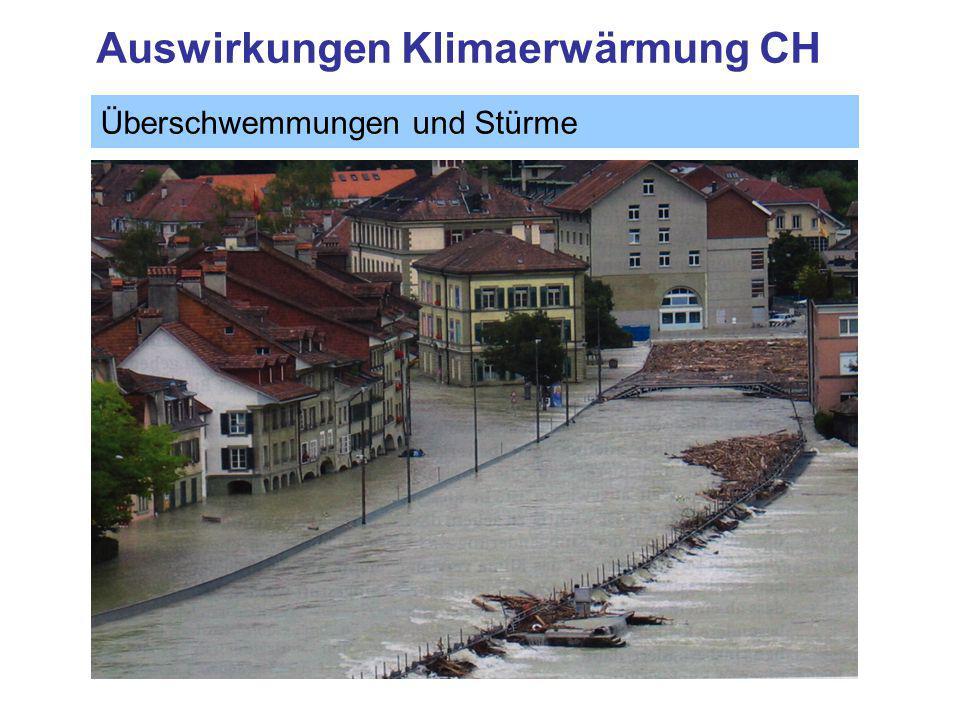 Auswirkungen Klimaerwärmung CH