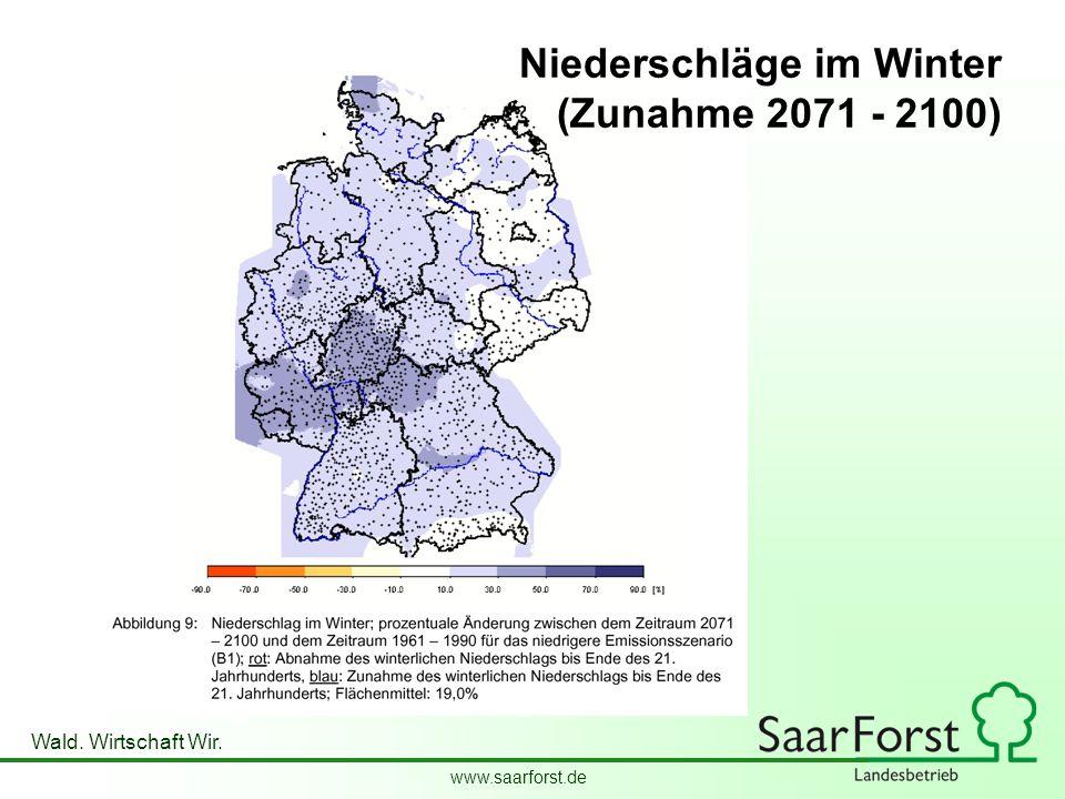 Niederschläge im Winter (Zunahme 2071 - 2100)