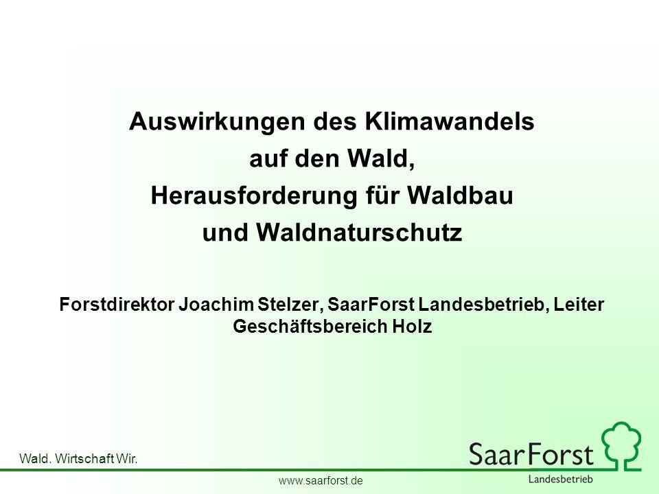 Auswirkungen des Klimawandels Herausforderung für Waldbau