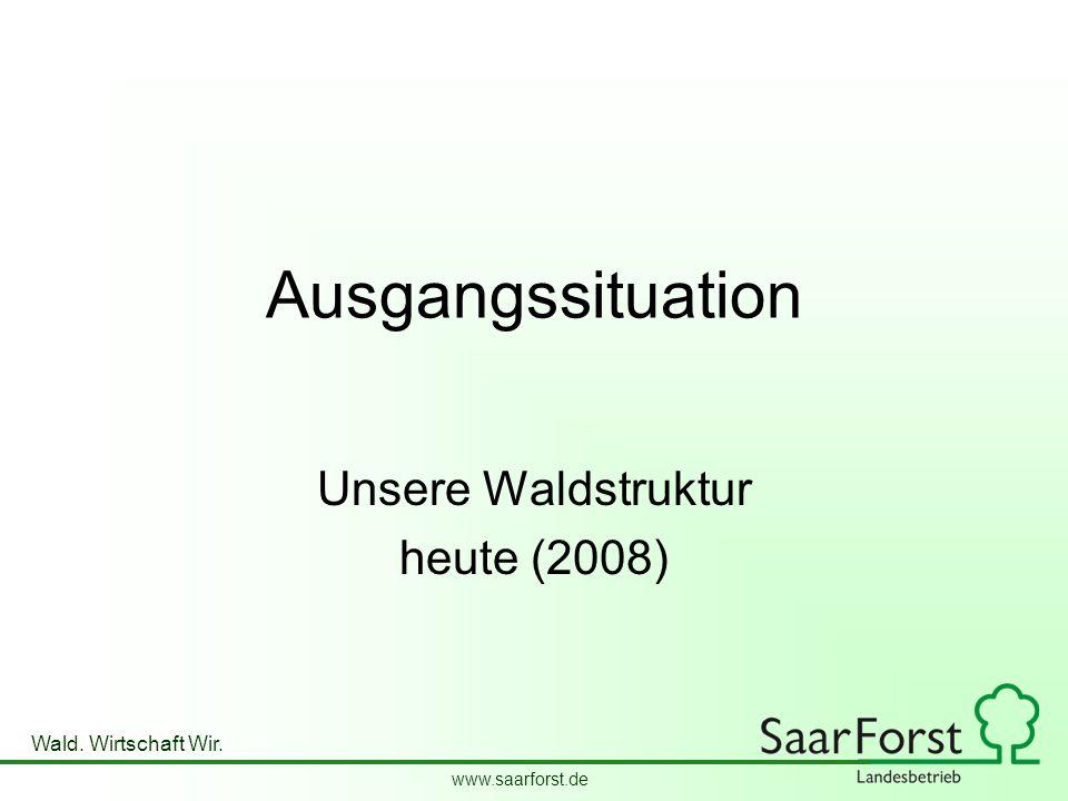 Unsere Waldstruktur heute (2008)