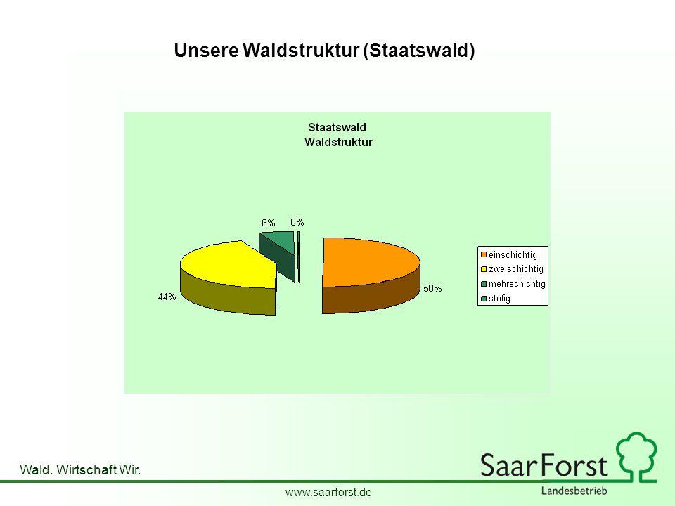 Unsere Waldstruktur (Staatswald)