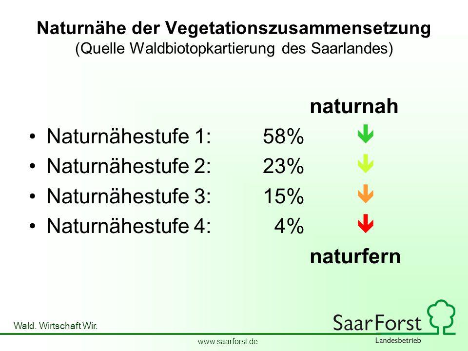 naturnah Naturnähestufe 1: 58%  Naturnähestufe 2: 23% 