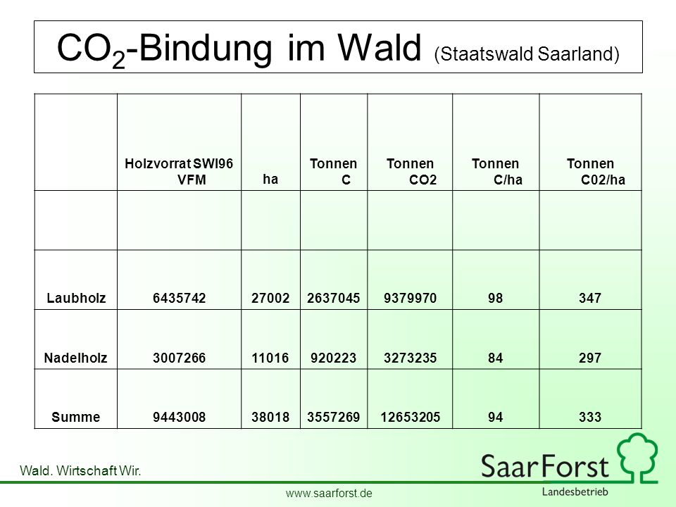 CO2-Bindung im Wald (Staatswald Saarland)