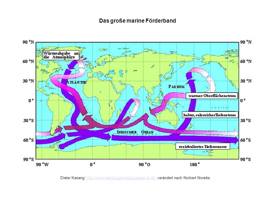 Das grosse marine Förderband