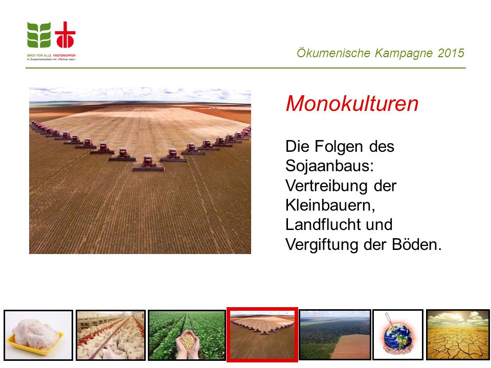Monokulturen Die Folgen des Sojaanbaus: Vertreibung der Kleinbauern,