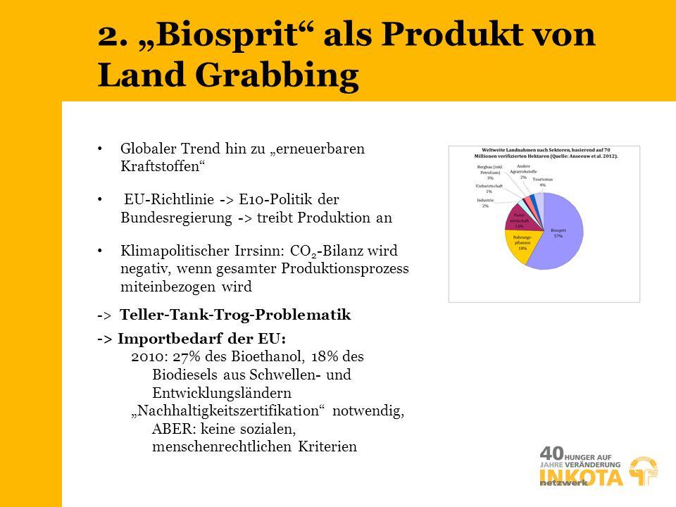 """2. """"Biosprit als Produkt von Land Grabbing"""